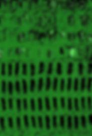 Capa Kay Sara web.jpg