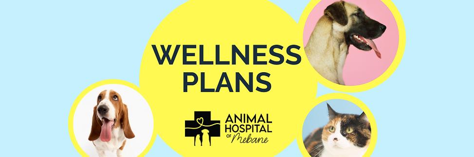 Copy of Wellness plan brochure FINAL (1)