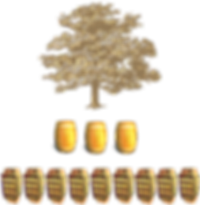oak tree infographic.png