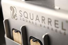 Squarrel Close Up 1a.jpg