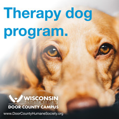 DCHS Therapy Dog Program