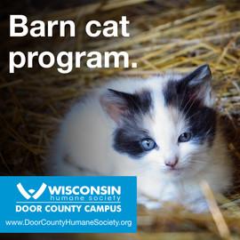 DCHS Barn Cat Program