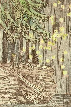 Fireflies after the Rain