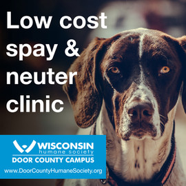 DCHS low cost Spay and Neuter Clinic