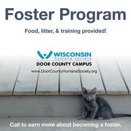 DCHS Foster Program