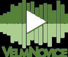 VelmNovice Logo