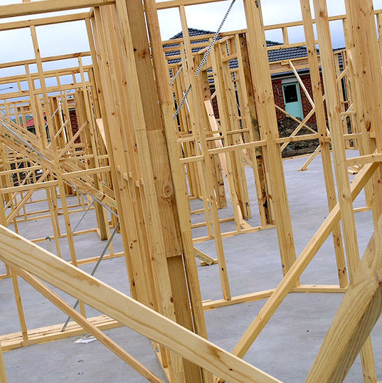 structural_carcassing_TIMBER_forest_inve