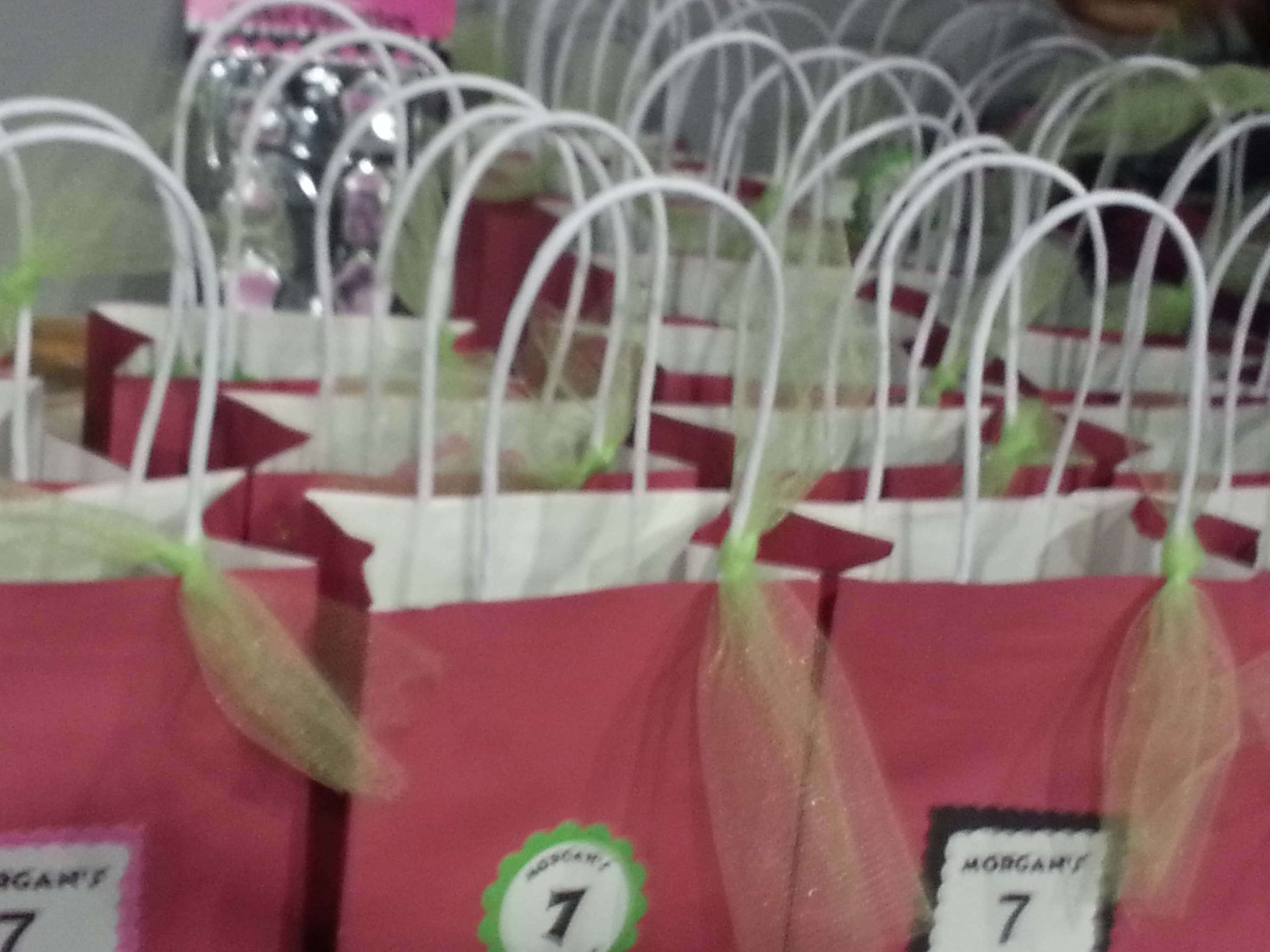 7th birthday bags