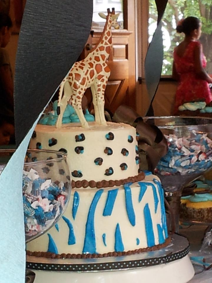 Zebra cheetah baby shower