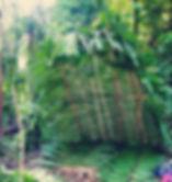 Bushcraft in Amazon Jungle