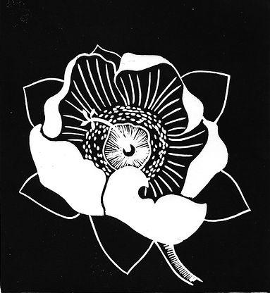 Boabab Flower - 2000px.jpg