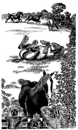 'Rolling Horses' print