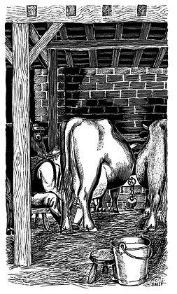 'Milking' print