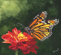 Sharon Hunt - Monarch