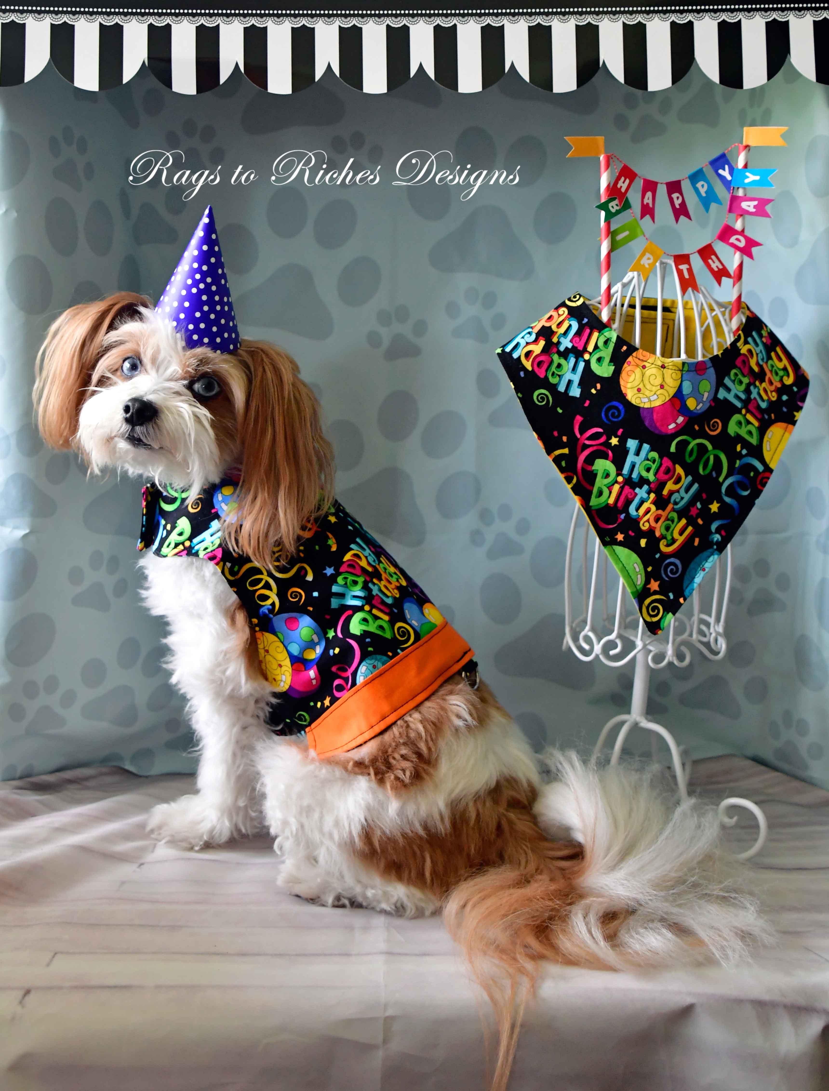 Happy Birthday Vest and Bandanas