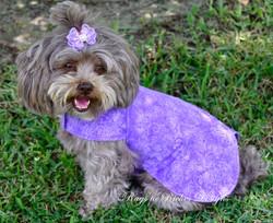 Summer Wrap Shirt-Purple Flowers