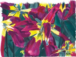 Sharon Hunt - Tulips Everywhere
