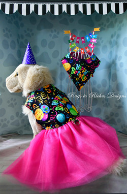 Happy Birthday Tutu Dress