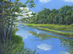 Kurt Harris - Wekiva River