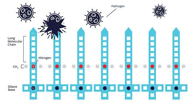 Edited-ZOONO_Molecule-diagram.jpg