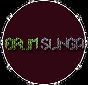 DrumslingaArt--Head-Trans.png