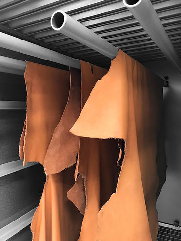 Tunnel essiccazione pelli ad armadio da laboratorio Fratelli Carlessi.