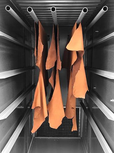 Tunnel essiccazione pelli ad armadio da laboratorio Fratelli Carlessi