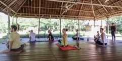 Afternoon vinyasa flow
