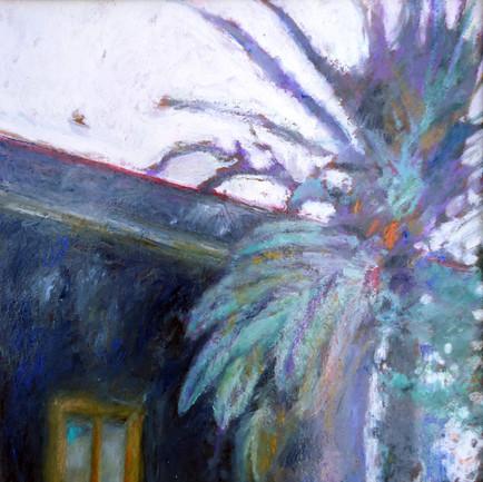 La palma e la casa viola