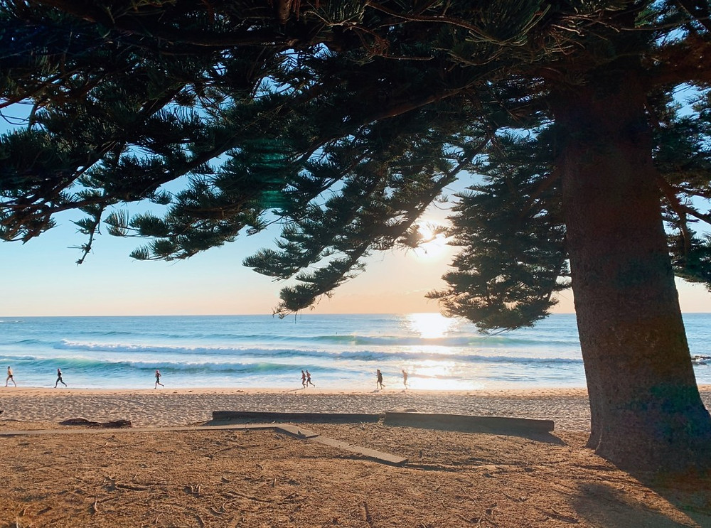 Morning sun at Avalon Beach