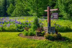sign-lupine-field