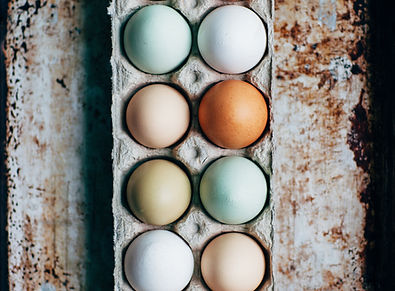 Organic eggs | Stowe Meadows