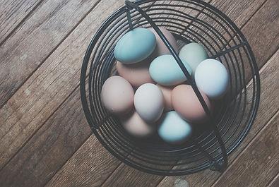 Organic Eggs | Stowe Meadows