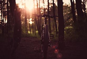 Stowe Bike Path | Stowe Meadows