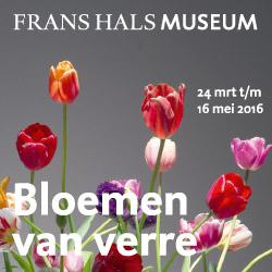 Frans Hals Museum Bloemen van Verre