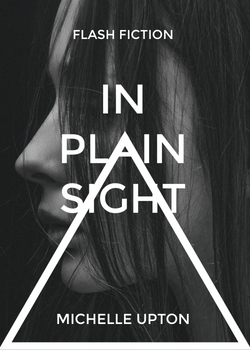 In Plain Sight 4