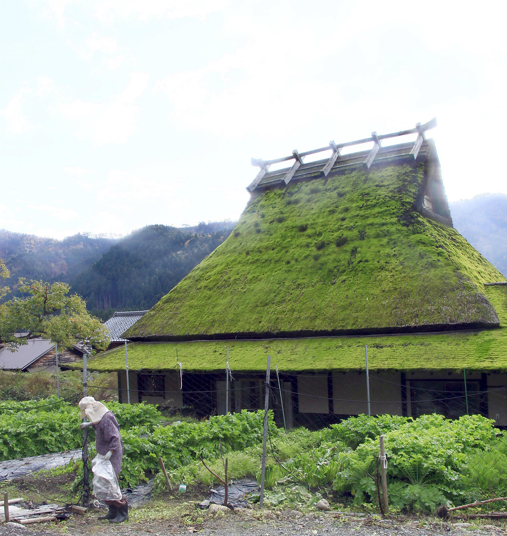 Miyama Kayabuki rural village experience