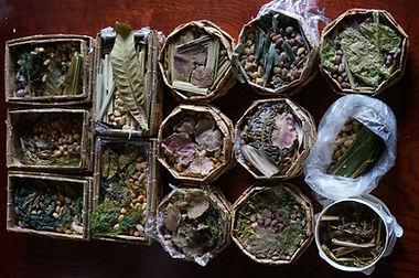 Medicinal Herb Natto - Fermented Soybean Class