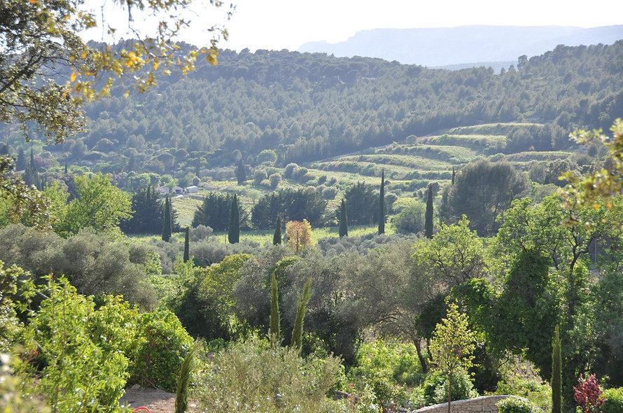 Panorama du Mas du Perthus, cote vignes