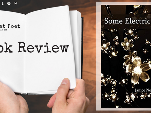 Book Review: Some Electric Hum Poems by Janice Northerns