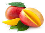 Mango-Image-free-3.jpg