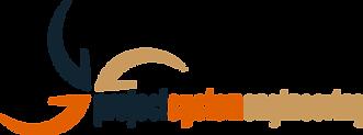 GRA-300-10050_Logo PSE Solutions GmbH_A.