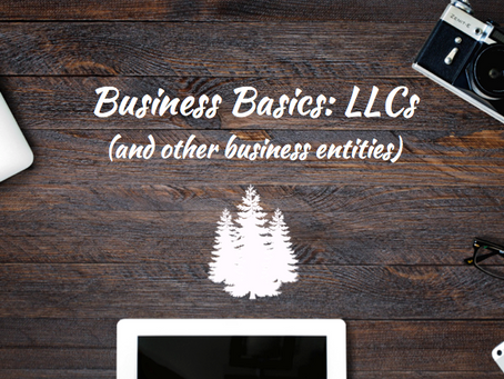 Business Basics: LLCs (and other business entities)