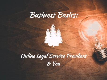 Business Basics: Online Legal Service Providers & You