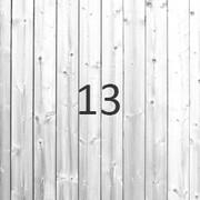 20190213-diverse_3.jpg