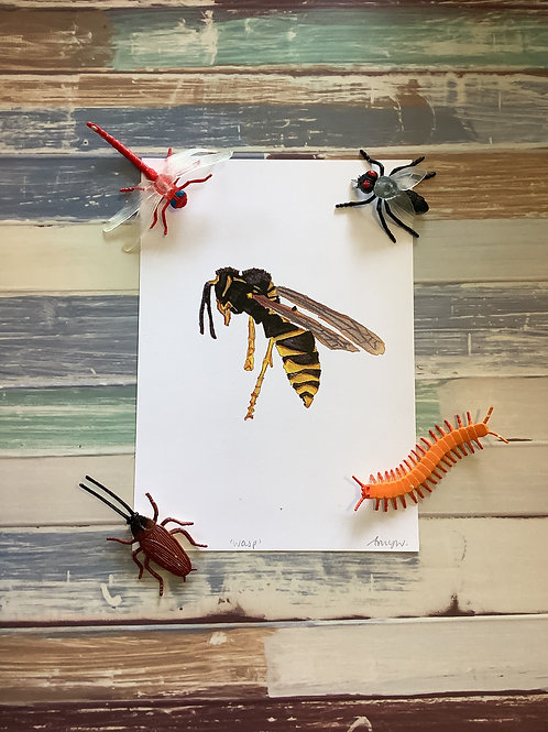 Wasp A5 Heavy Weight Art Print