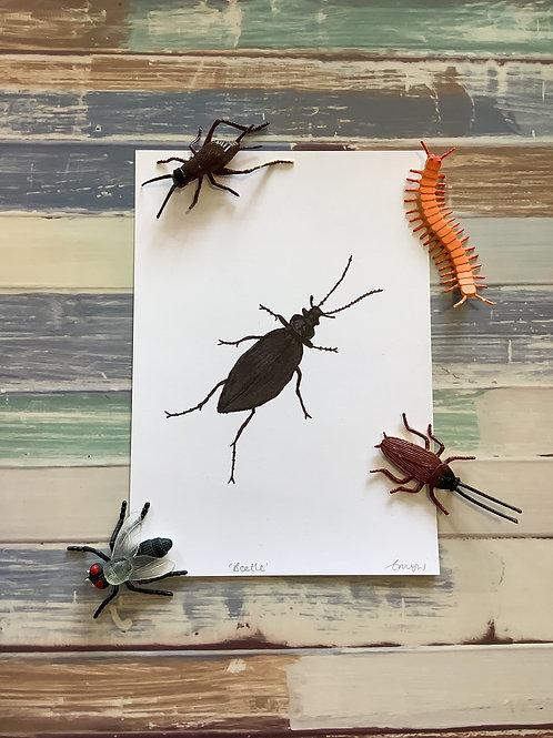 Beetle A5 Heavy Weight Art Print