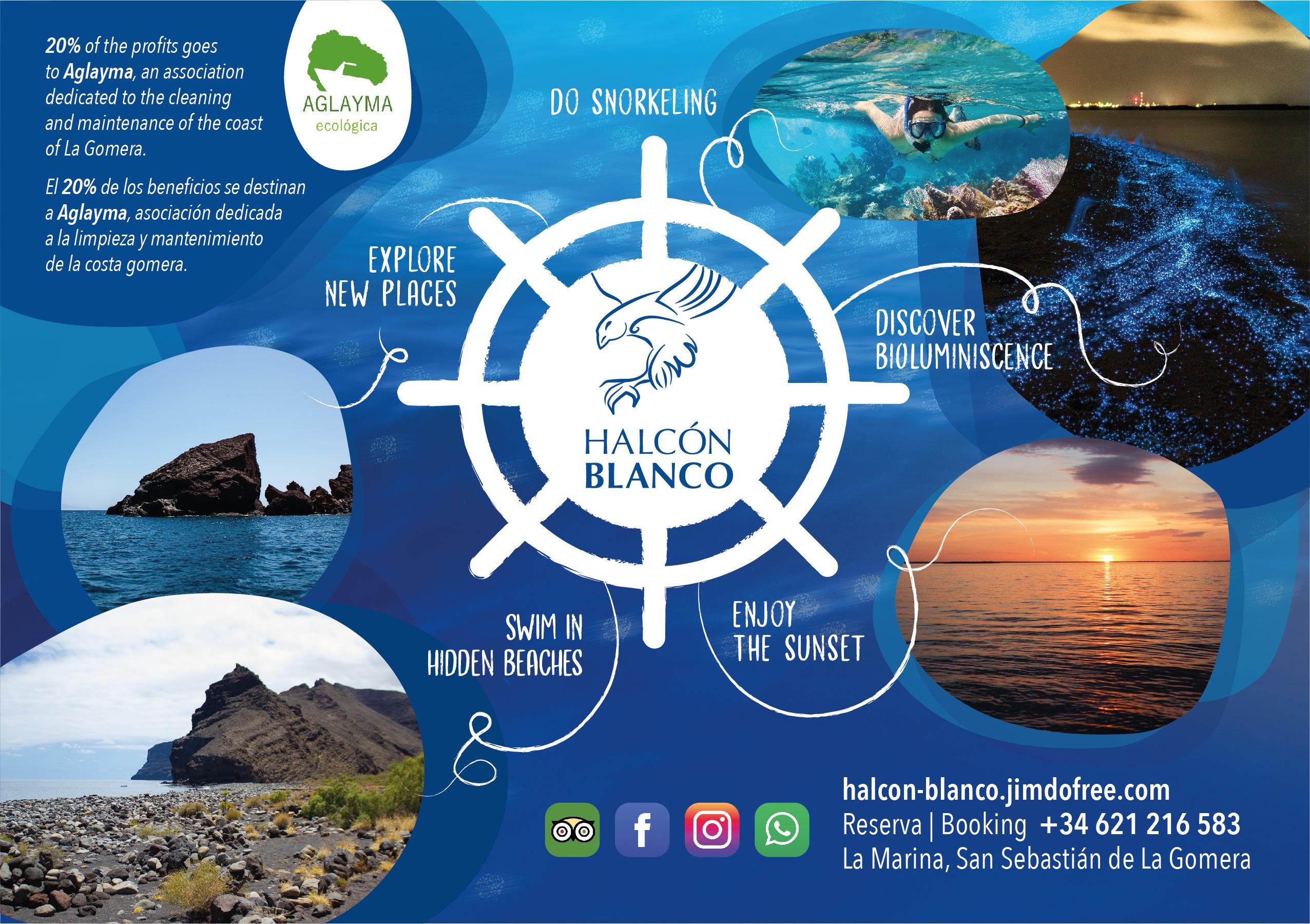 HALCON BLANCO-02