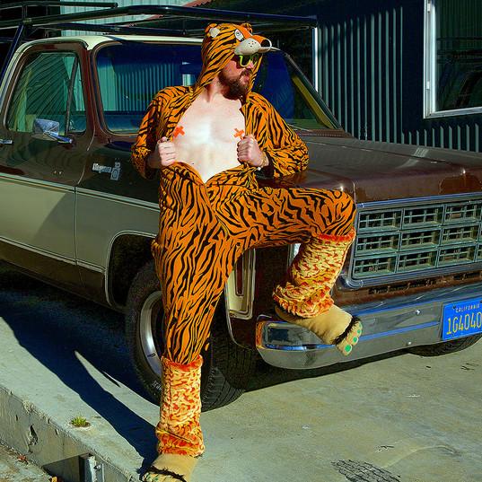 tigro truck.jpg