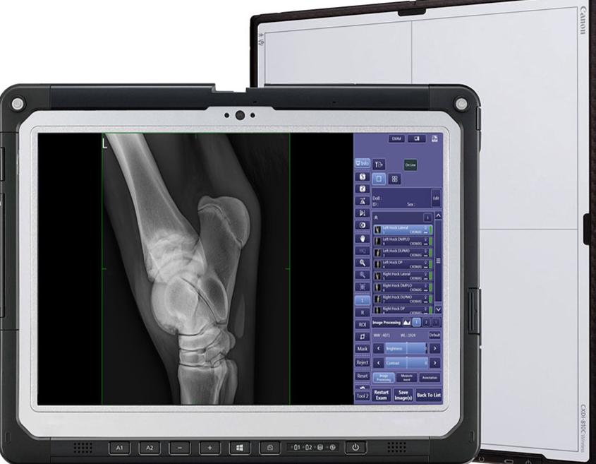 Digital Radiography&Ultrasonograph